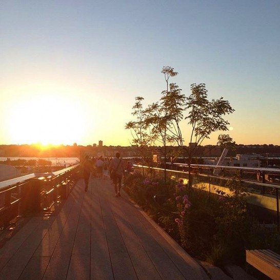 Sunset on the High Line in NYC. Photo by @catherinetrinidad via @highlinenyc.