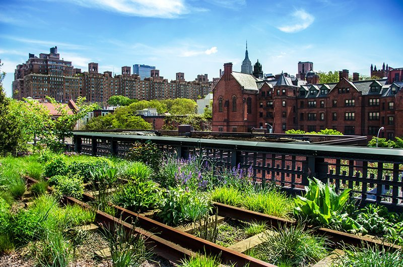 High-Line-Chelsea-Knickerbocker-Guide-to-Chelsea